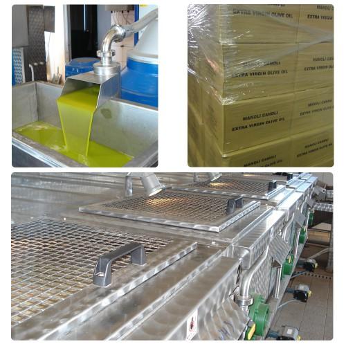 https://manolicanoli.net/wp-content/uploads/2015/09/Manoli-Canoli-Olive-Oil-Production-500x500.jpg